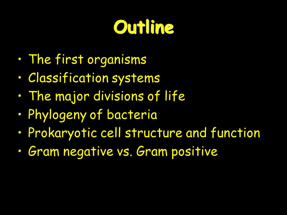 Outline The first organisms Classification systems