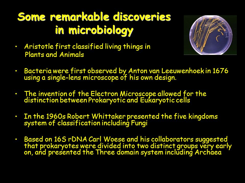 Some remarkable discoveries in microbiology