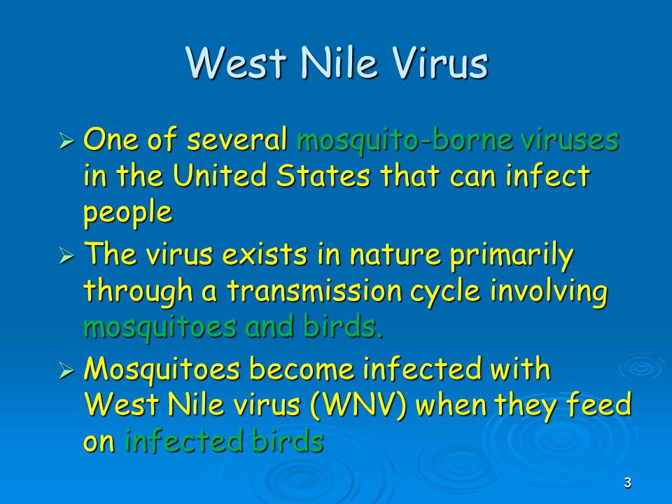 West Nile Virus One of several mosquito-borne viruses in the United States that can infect people.
