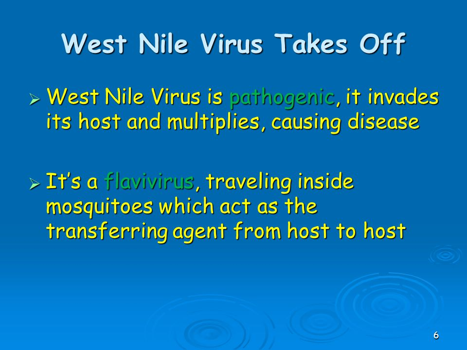 West Nile Virus Takes Off