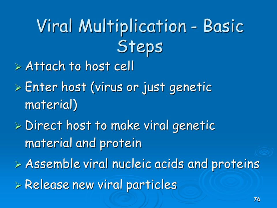 Viral Multiplication - Basic Steps