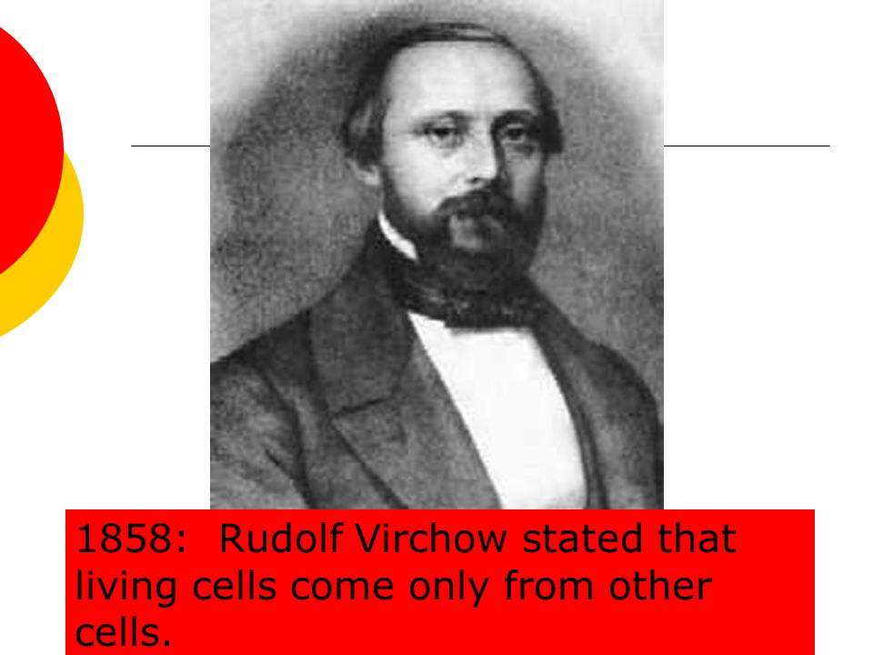 1858: Rudolf Virchow stated that living cells come only from other cells.
