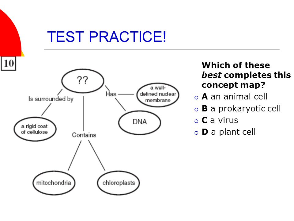TEST PRACTICE! Which of these best completes this concept map