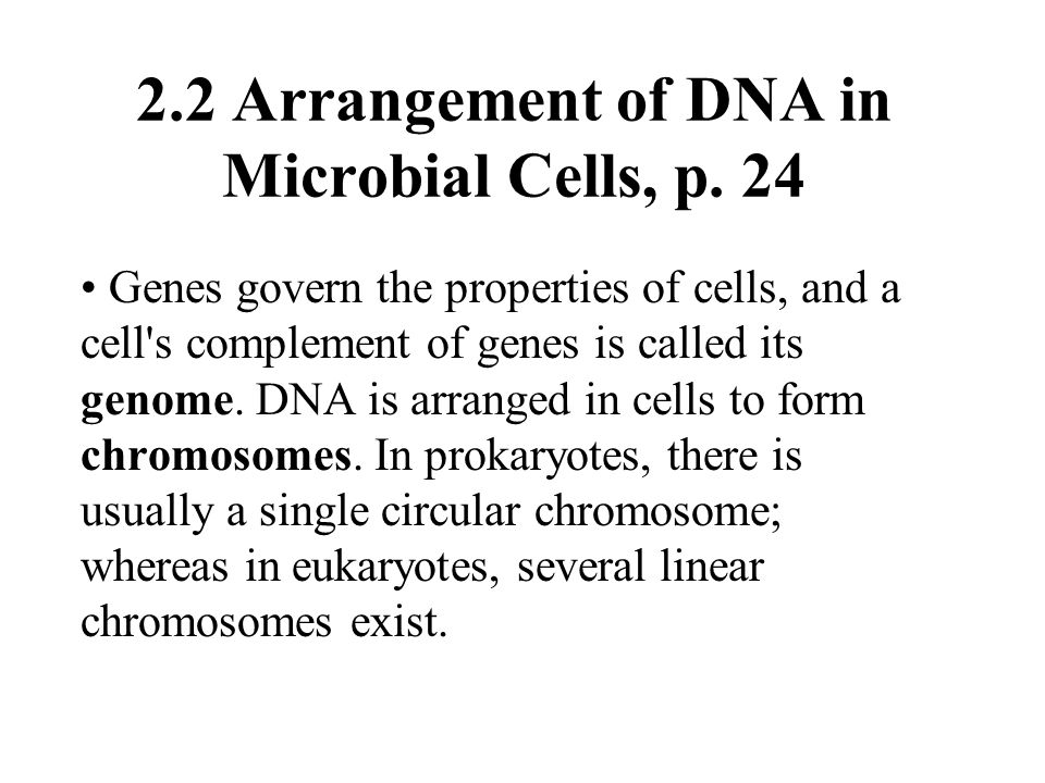 2.2 Arrangement of DNA in Microbial Cells, p. 24