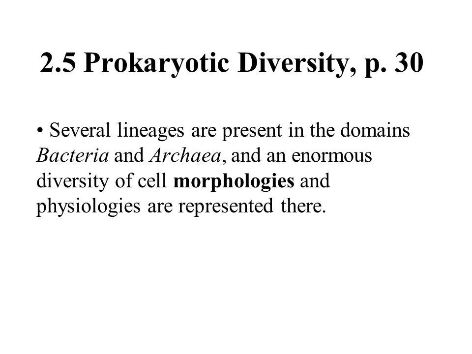 2.5 Prokaryotic Diversity, p. 30