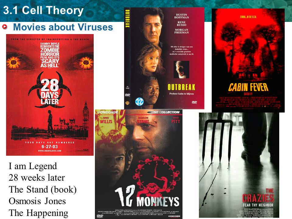 Movies about Viruses I am Legend 28 weeks later The Stand (book) Osmosis Jones The Happening