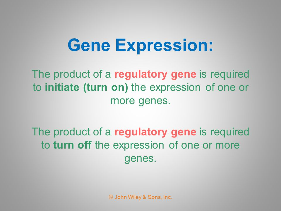 Gene Expression: The product of a regulatory gene is required to initiate (turn on) the expression of one or more genes.