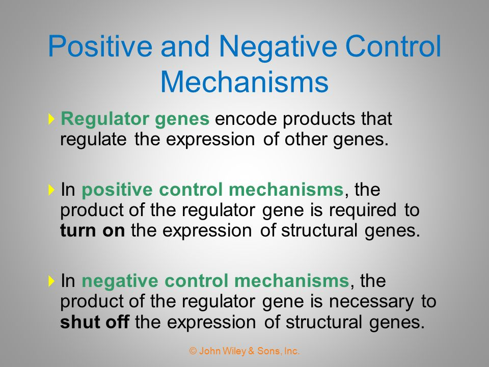 Positive and Negative Control Mechanisms