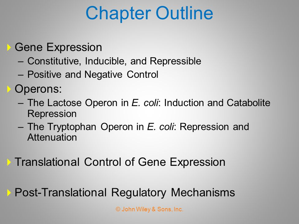 Chapter Outline Gene Expression Operons: