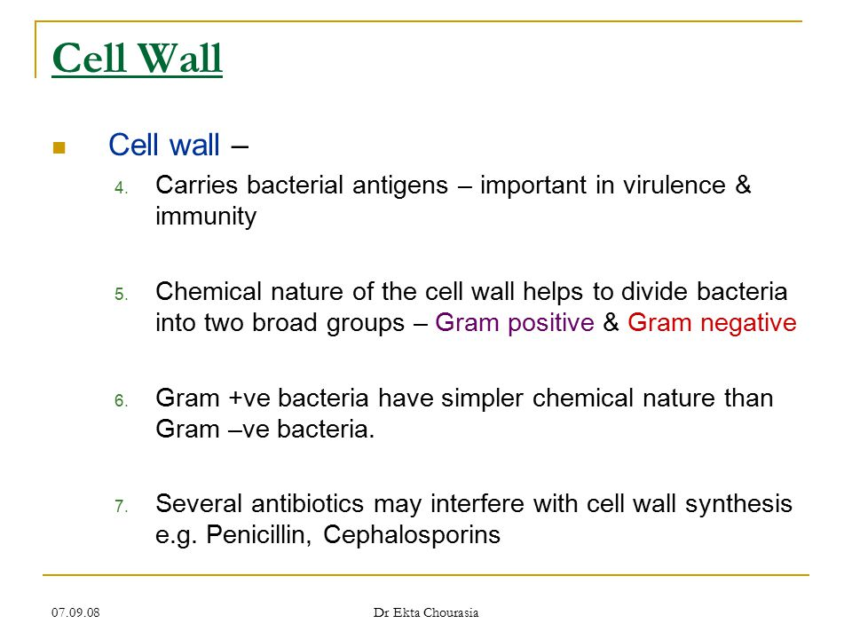 Cell Wall Cell wall – Carries bacterial antigens – important in virulence & immunity.