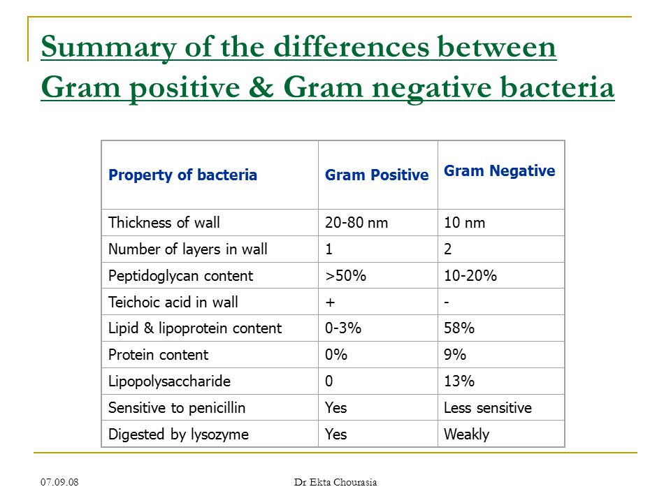 Summary of the differences between Gram positive & Gram negative bacteria