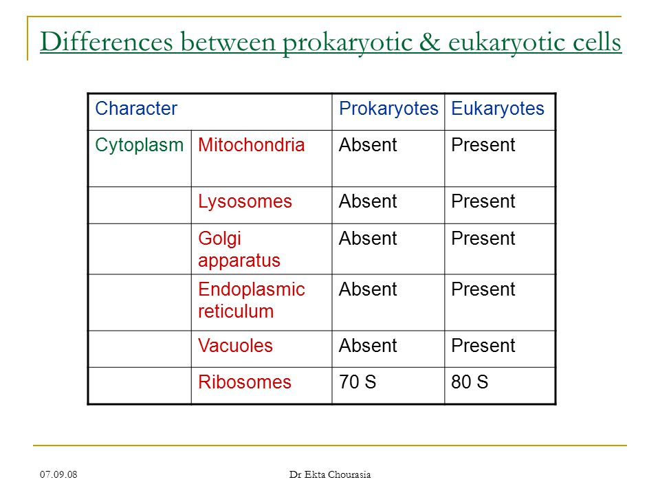 Differences between prokaryotic & eukaryotic cells