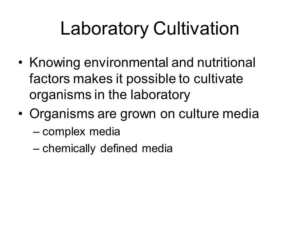 Laboratory Cultivation