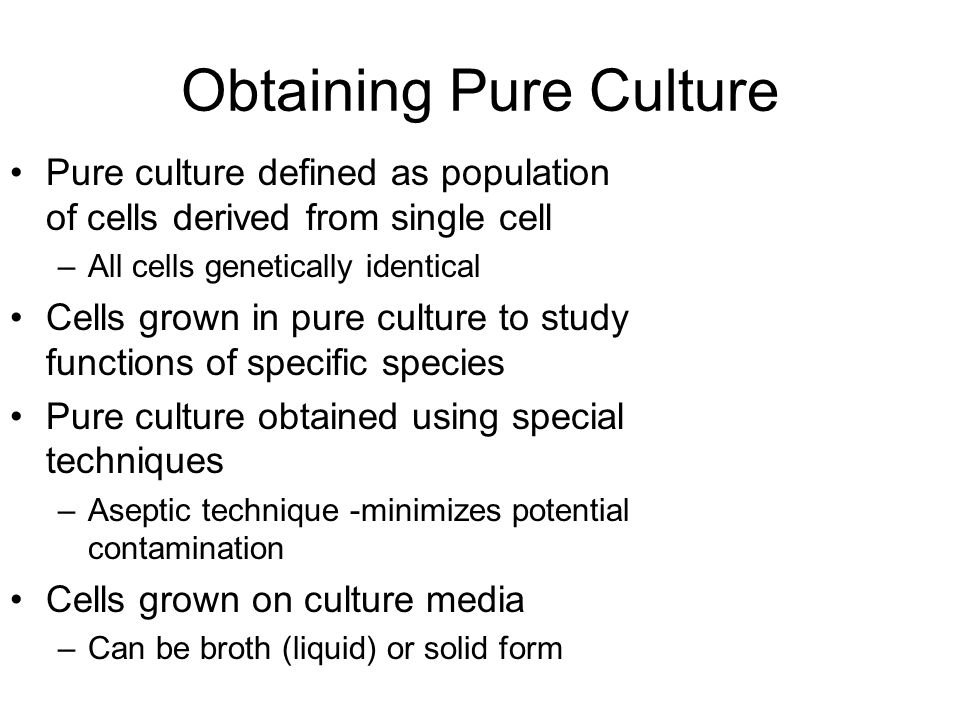 Obtaining Pure Culture