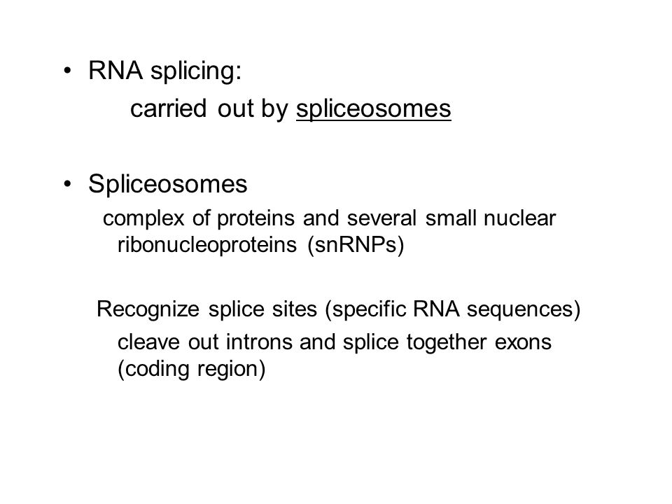 carried out by spliceosomes Spliceosomes