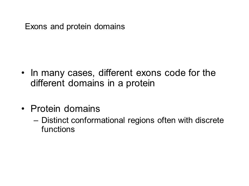 Exons and protein domains