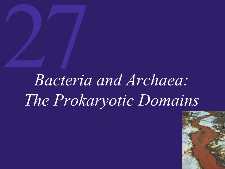 Bacteria and Archaea: The Prokaryotic Domains