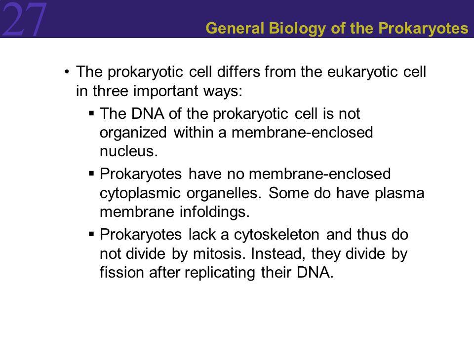 General Biology of the Prokaryotes
