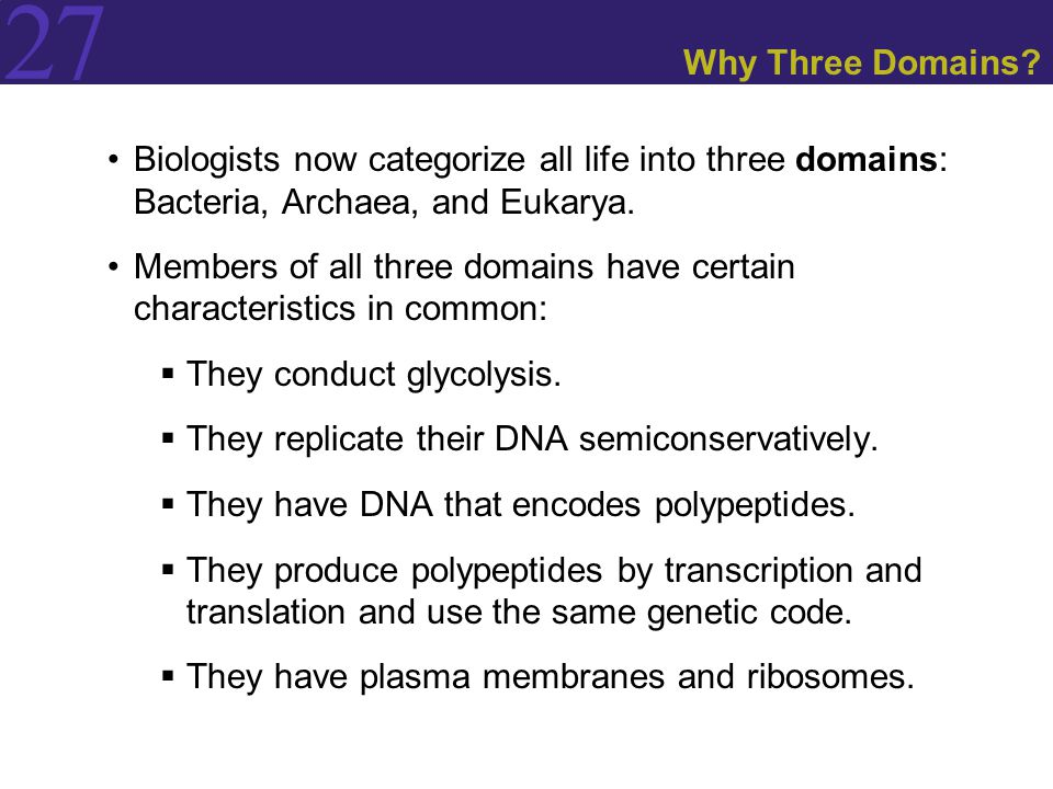 Why Three Domains Biologists now categorize all life into three domains: Bacteria, Archaea, and Eukarya.