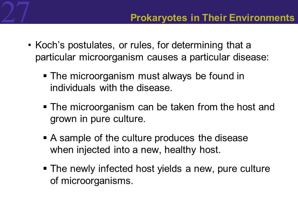 Prokaryotes in Their Environments
