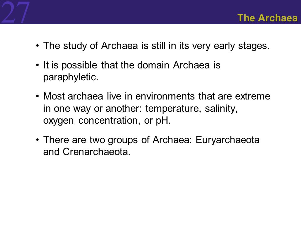 a study of archaeobacteriaprokaryotic organisms Study and learning tips  one of the differences between these two organisms that stands out right away is their size  or archaea most prokaryotes have a high .