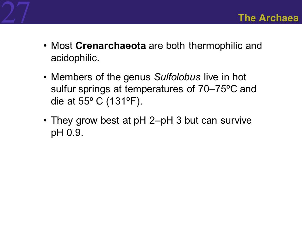 The Archaea Most Crenarchaeota are both thermophilic and acidophilic.