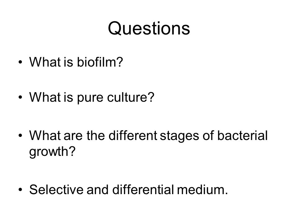 Questions What is biofilm What is pure culture