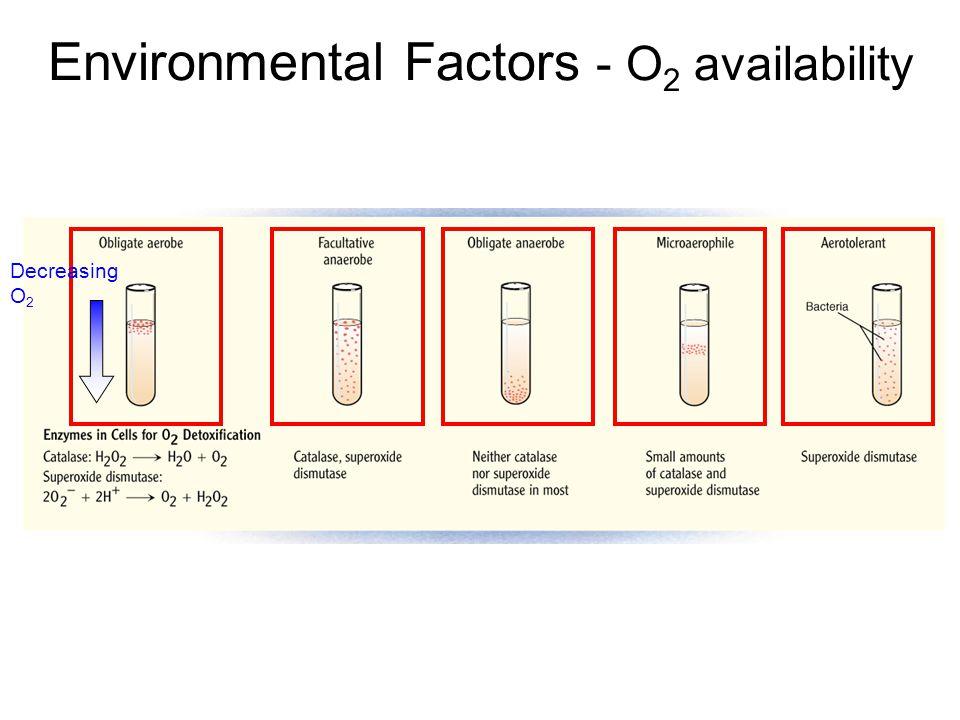 Environmental Factors - O2 availability