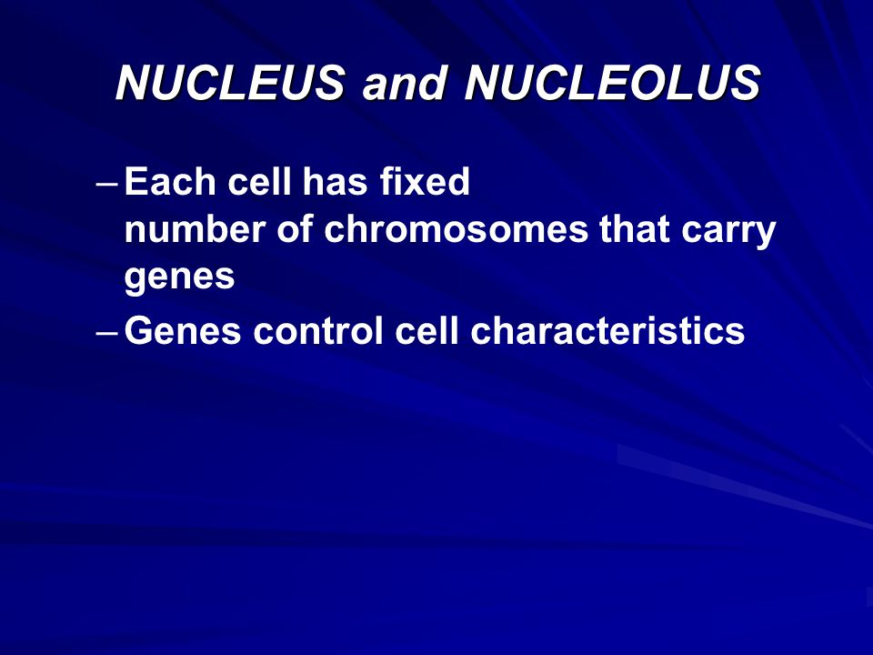 NUCLEUS and NUCLEOLUS Each cell has fixed number of chromosomes that carry genes.