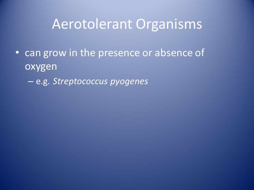 Aerotolerant Organisms