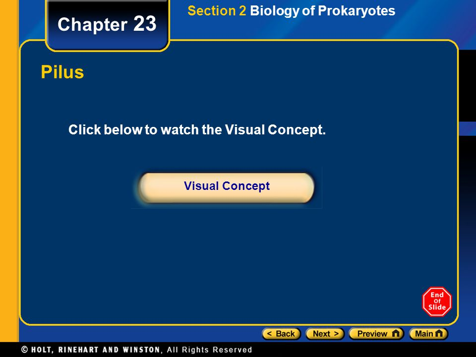 Chapter 23 Pilus Section 2 Biology of Prokaryotes