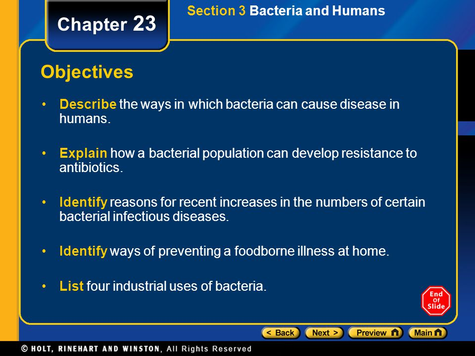 Chapter 23 Objectives Section 3 Bacteria and Humans