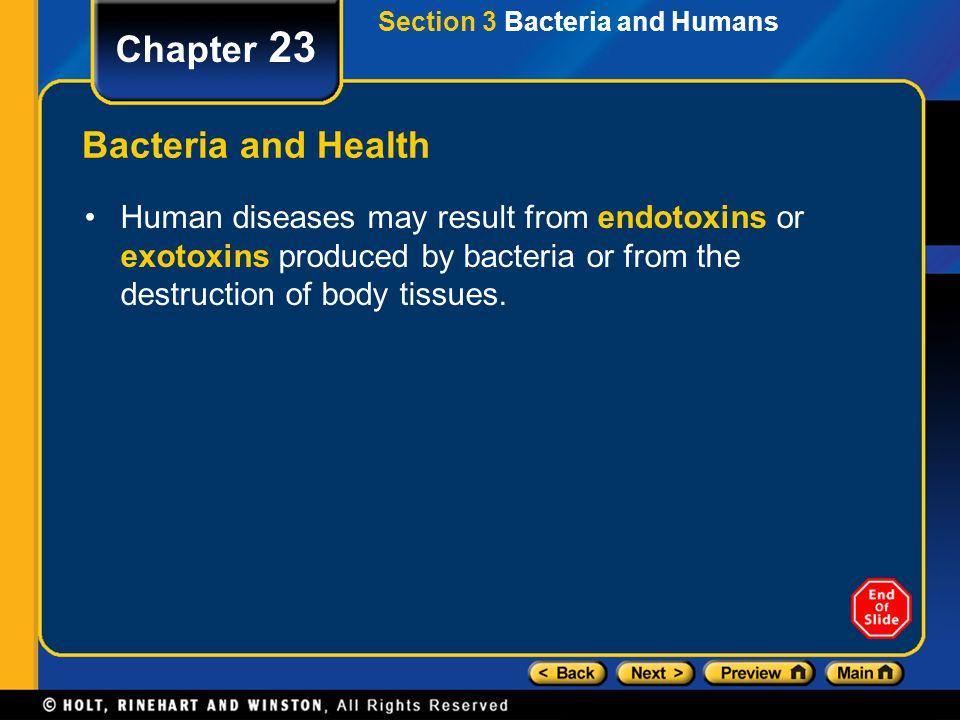 Chapter 23 Bacteria and Health