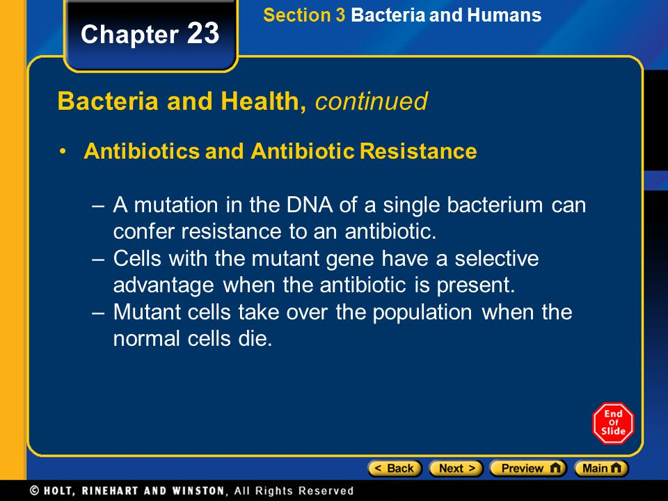 Bacteria and Health, continued