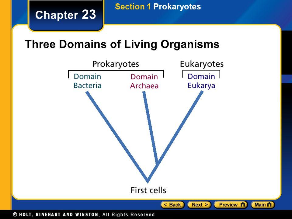 Three Domains of Living Organisms