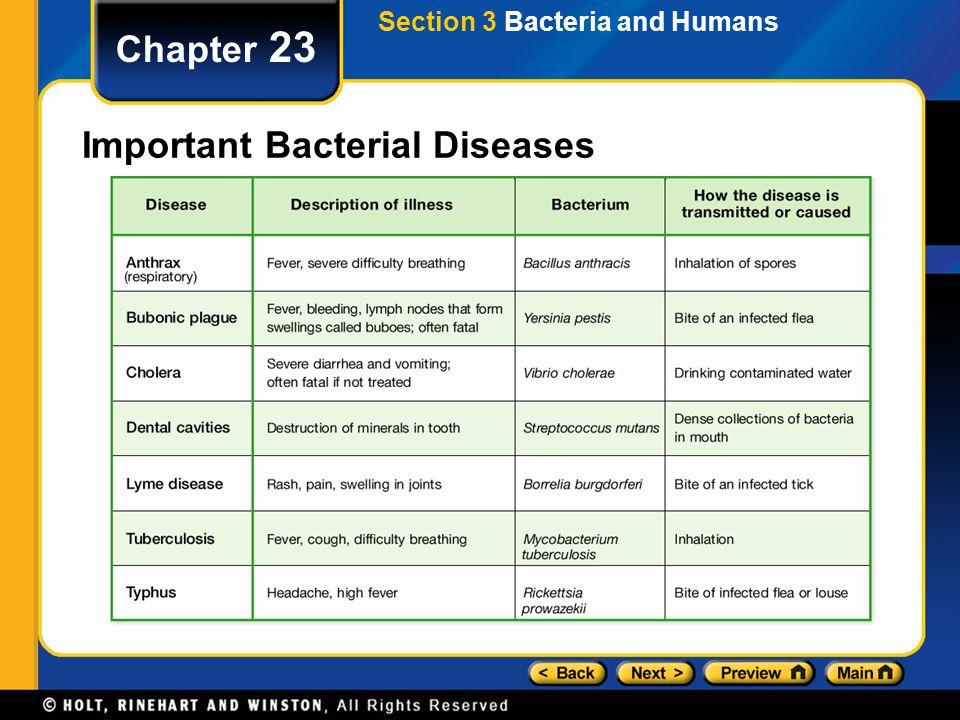 Important Bacterial Diseases