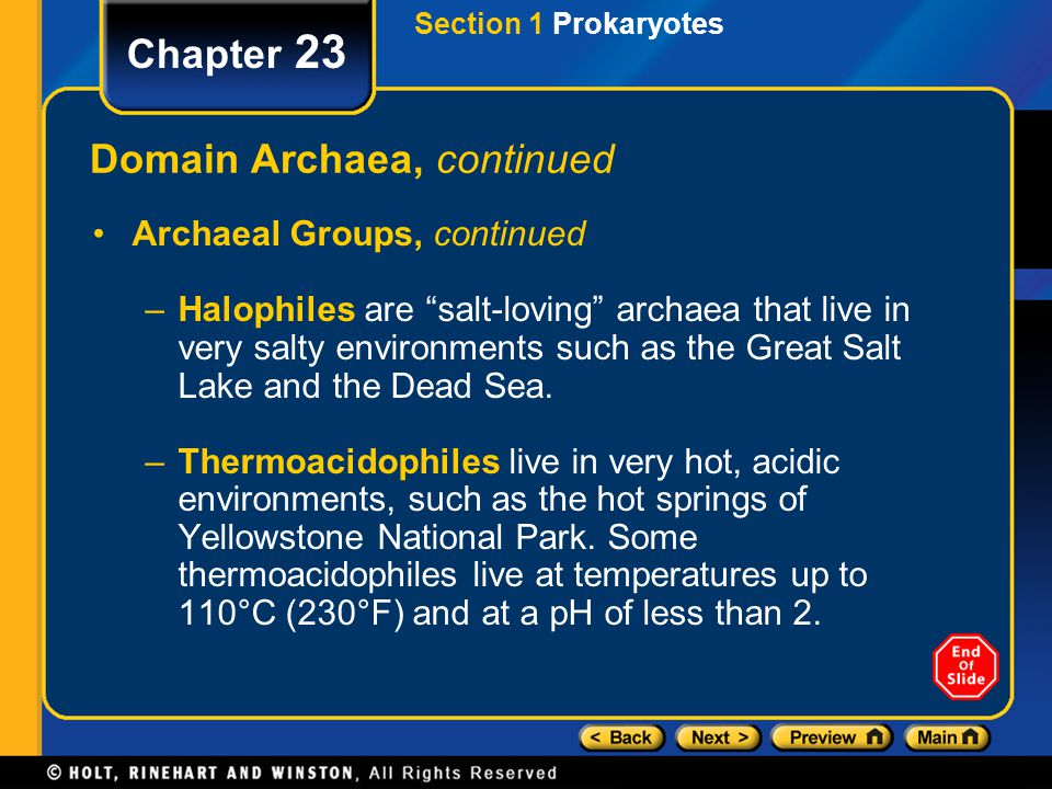 Domain Archaea, continued