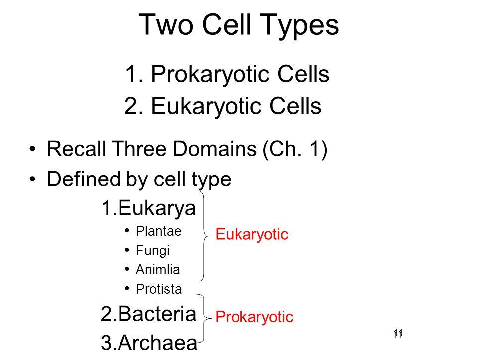 Two Cell Types Prokaryotic Cells Eukaryotic Cells
