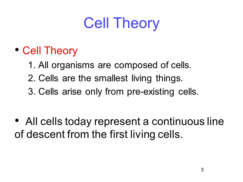 Cell Theory Cell Theory