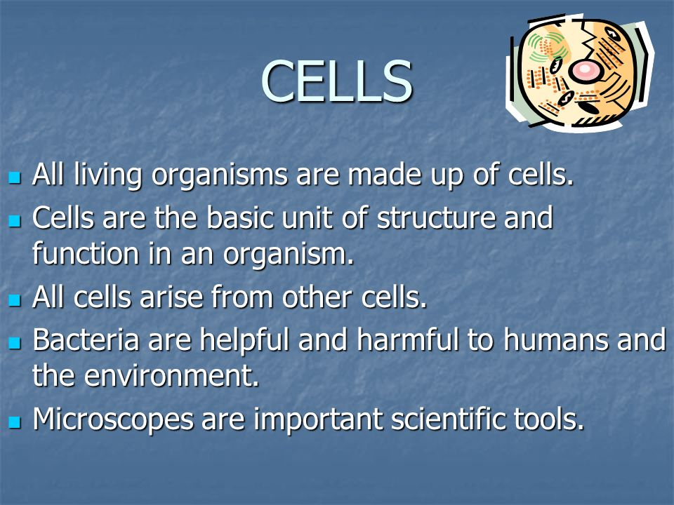 CELLS All living organisms are made up of cells.