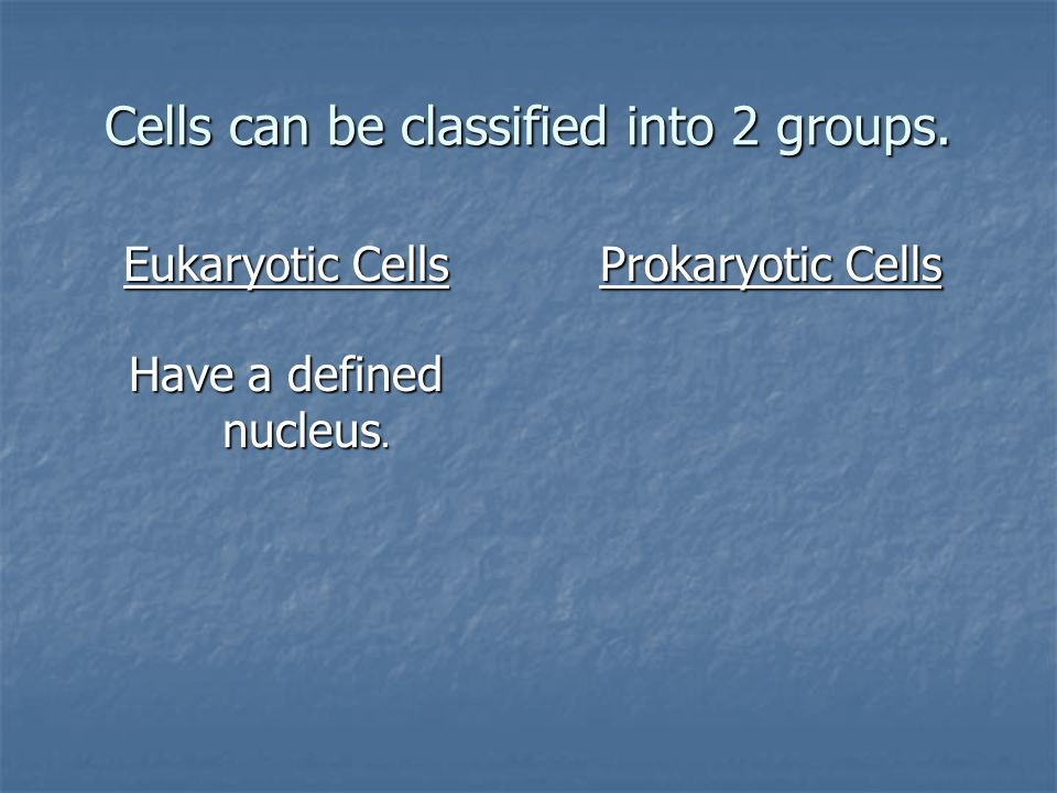 Cells can be classified into 2 groups.