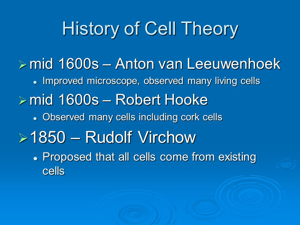 History of Cell Theory 1850 – Rudolf Virchow