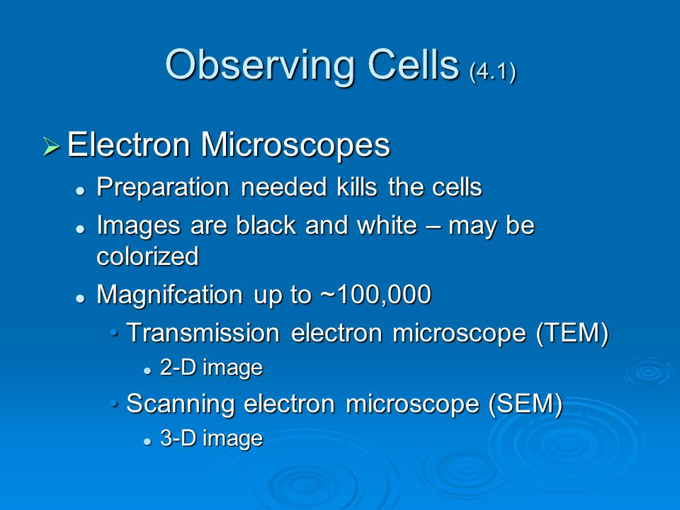 Observing Cells (4.1) Electron Microscopes