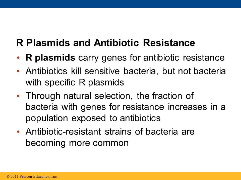 R Plasmids and Antibiotic Resistance