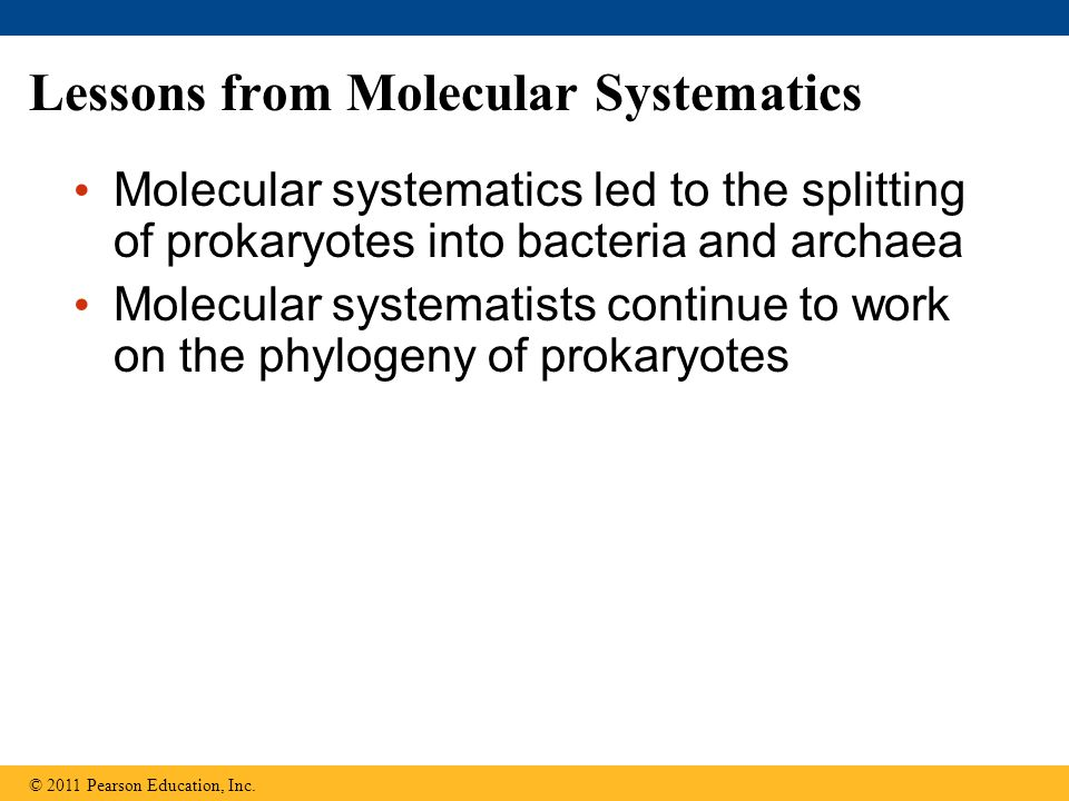 Lessons from Molecular Systematics