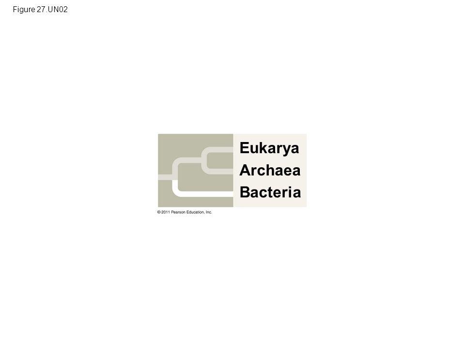 Eukarya Archaea Bacteria Figure 27.UN02
