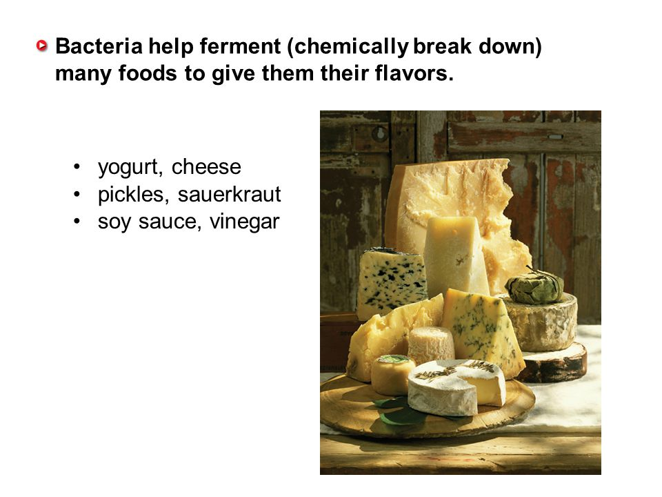 Bacteria help ferment (chemically break down) many foods to give them their flavors.
