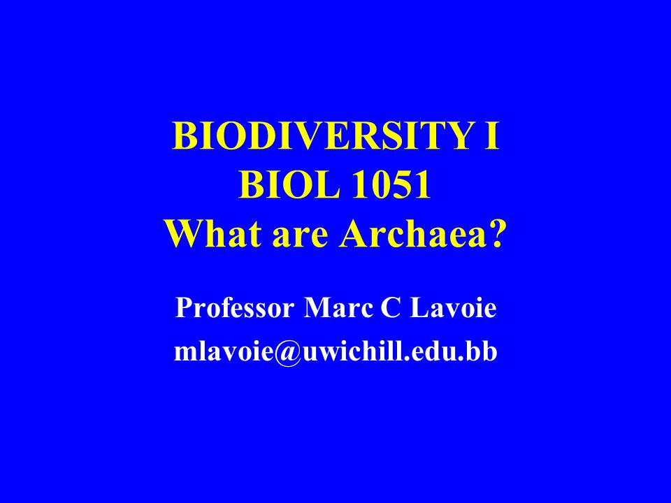 BIODIVERSITY I BIOL 1051 What are Archaea