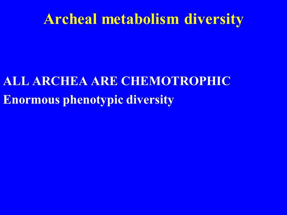 Archeal metabolism diversity