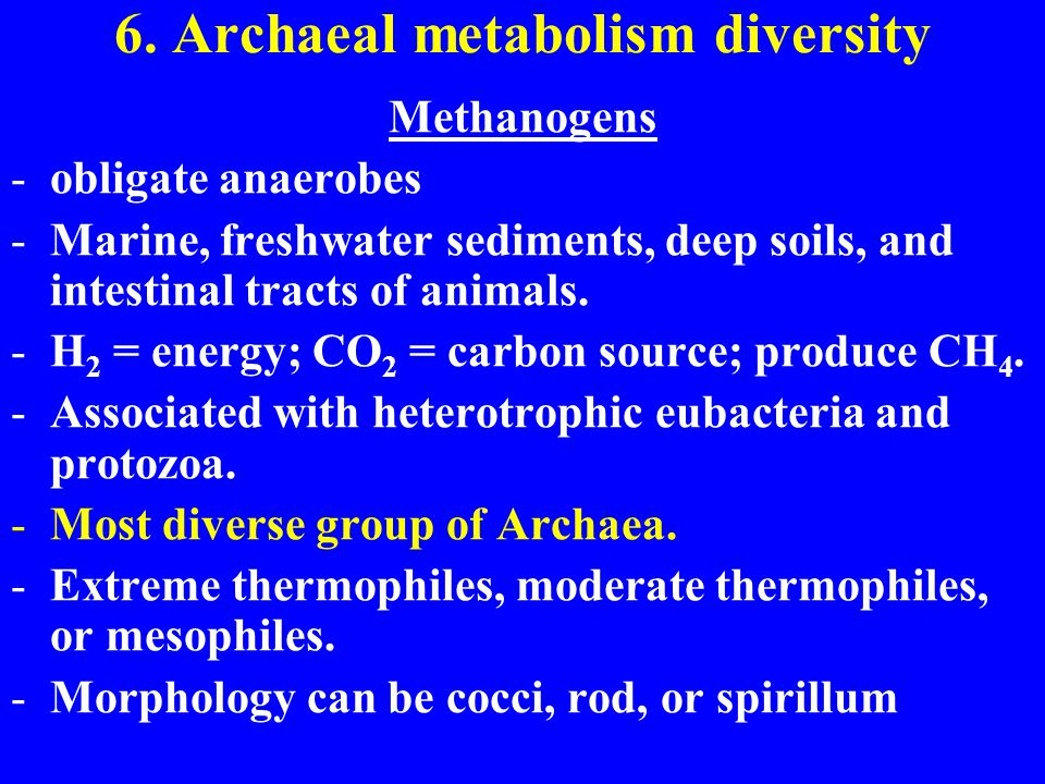 6. Archaeal metabolism diversity